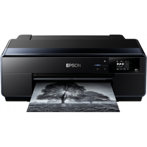 EPSON Printer SureColor P600